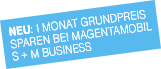 MagentaMobil Business Stoerer